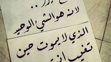 Photo of إخلاص النية سبب في زيادة الرزق ومضاعفة الثواب