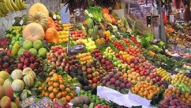 Photo of أسعار الخضراوات اليوم