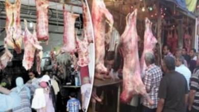 Photo of كيف يمكنك التميز بين اللحوم البقرى والجاموسى والضانى