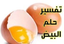 Photo of تفسير رؤيه البيض في المنام.