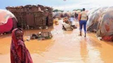 Photo of السودان:وفاة 88 شخصا وإنهيار 1057 منزلا بسبب السيول