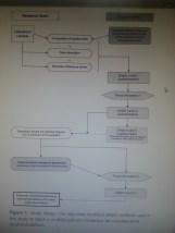 Similar methodology that I have developed for the hospital indicators