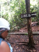 Zip Lining in Dennery (10)
