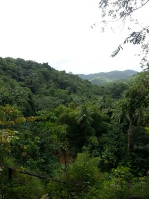 Zip Lining in Dennery (18)