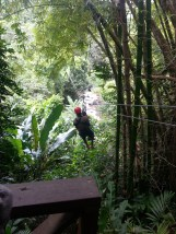 Zip Lining in Dennery (35)
