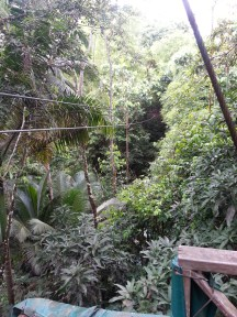 Zip Lining in Dennery (5)