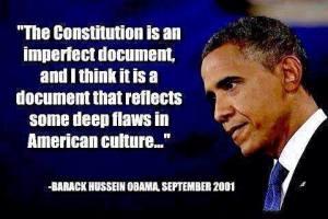 obama-consti