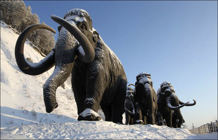 Woolly Mammoths Suffered Genetic Meltdown Just Before Extinction – Big Pharma Getting Ready to do the Same!