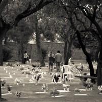 'Cementerio de los elefantes' *** Boliwijskie cmentarze