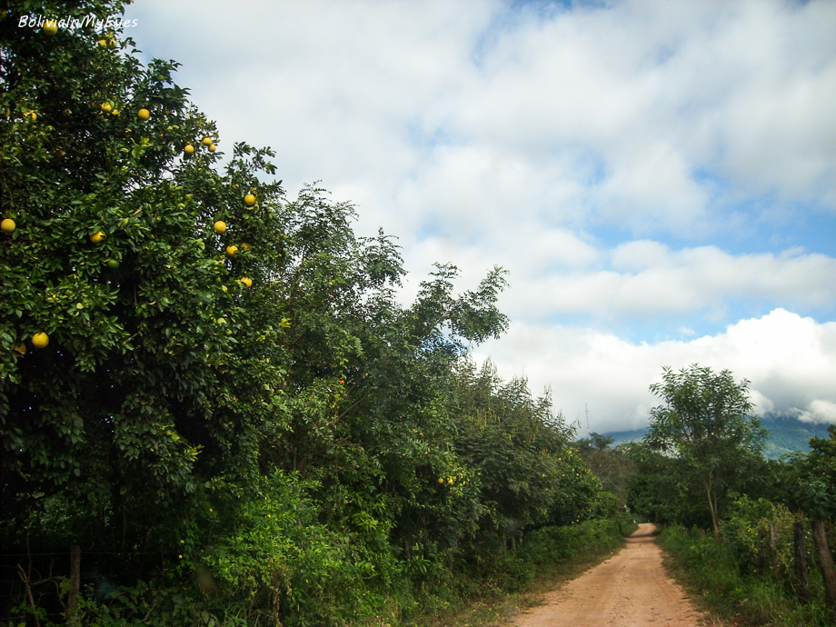 Pueblos Guaranies