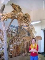 Giant sloth/ wielki leniwiec!