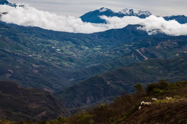 el camino antiguo a Cochabamba