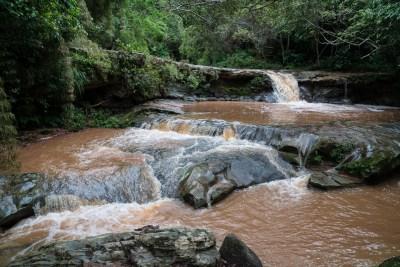 Vandløb i Amboro nationalparken