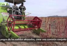 Bolivia News 14 Enero 2015