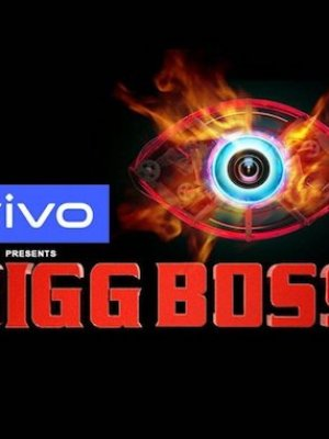 Bigg Boss S13 HDTV 480p 200MB 15 November 2019