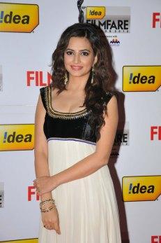 Kriti Kharbanda on the Red Carpet of '60the Idea Filmfare Awards 2012(South)