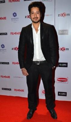 Rajat Barmecha at the Red Carpet of '60th Britannia Filmfare Awards 2014' Pr Awards Party at Hyatt Regency.