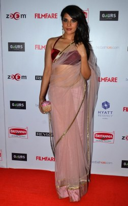 Richa Chadda at the '60th Britannia Filmfare Awards 2014' Pr Awards Party at Hyatt Regency.