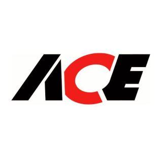 ACE Team Logo[1]