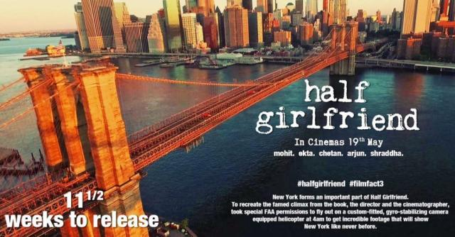 Half Girl Friend Film Facts