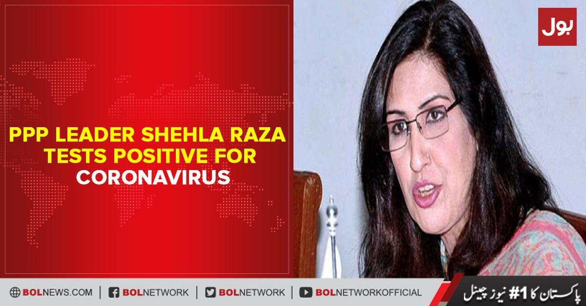 Photo of PPP leader Shehla Raza tests positive for coronavirus