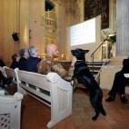 Bologna, 23/04/2017. FESTIVAL DELLA SCIENZA MEDICA 2017. ORATORIO DEI FILIPPINI. La medicina al guinzaglio: gli animali e la prevenzione in medicina. Foto Paolo Righi/Meridiana Immagini