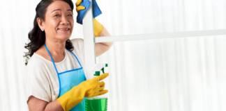 ama de llaver HAUSHÄLTERIN housekeeper empleada domestica_edited