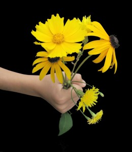 hand-offering-bouquet-of-daisies