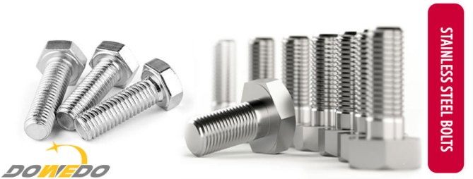 Stainless Steel 304 Bolts