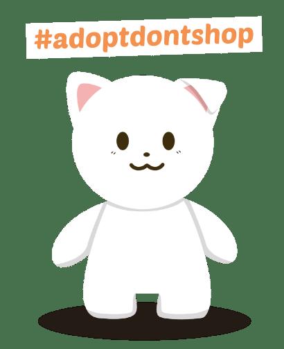 adopsi app