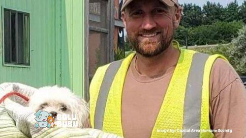 menyelamatkan anjing di tempat sampah