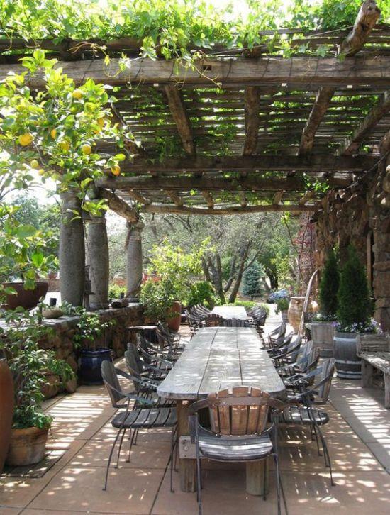 La terrasse de mes rêves...Du bois, du bois et beaucoup de végétaton !