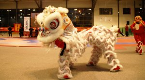 1.Viet-Vo-Dao avec la danse des dragons (école HONGQUYEN VO PHAI)