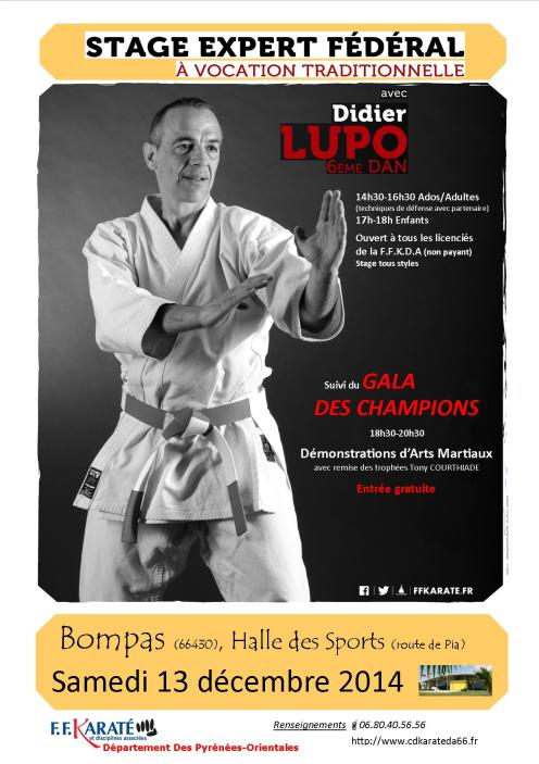 Affiche stage Didier LUPO