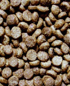 Bon-Apettreat Pet Food Dog Food