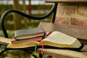books, learn, bible
