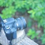 小野慎二郎(柴犬まる飼い主)使用のカメラや機材は?