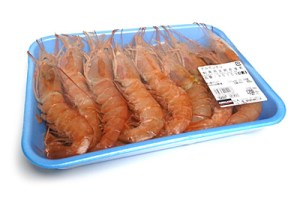 argentina_red_shrimp01