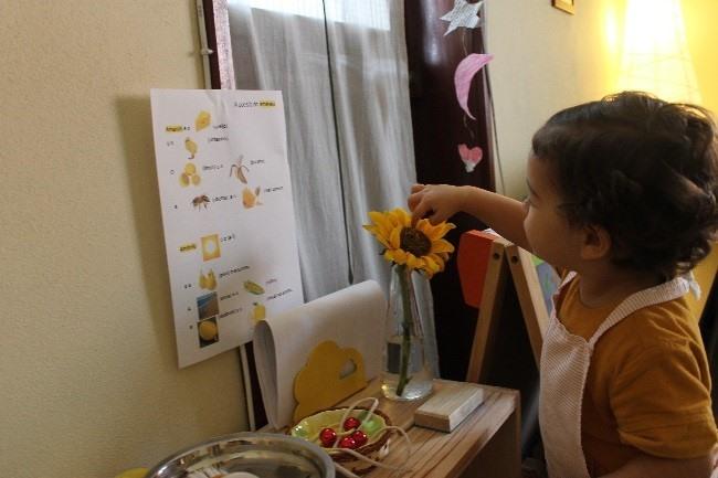 Montessori: Montessori, como ajuda a criança no dia-a-dia?
