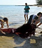 MERMAID-CORPSE-WASHES-UP-ON-BEACH