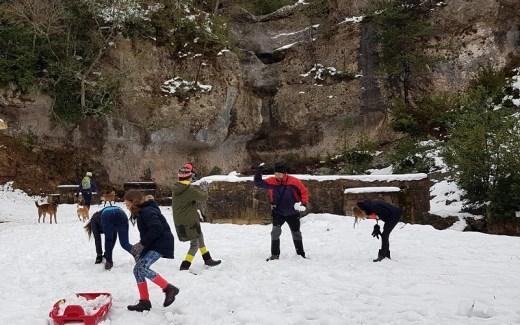 Winter in natuurpark Els Ports