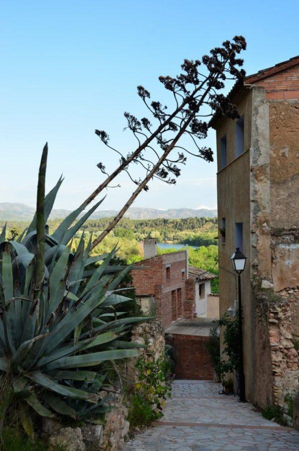 Miravet aan de Ebro   Sprookjesdorp Miravet   Wat te doen in Miravet?