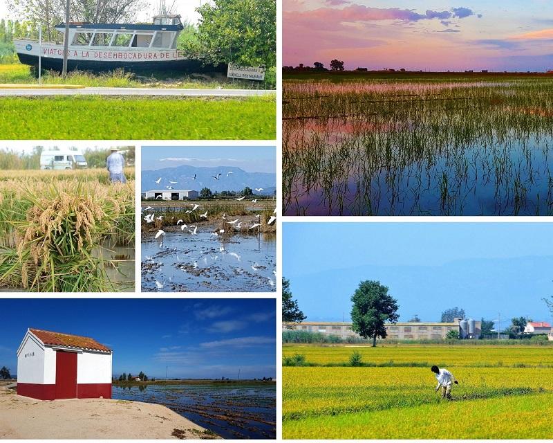 Ontdek natuurpark Ebro Delta