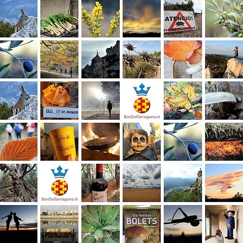 Herfsttips Tarragona | Herfst uitjes Tarragana | Tarragona in de herfst | Tarragona in de Herfstvakantie | Herfstvakantie Tarragona
