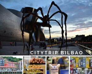 Citytrip Bilbao Stedentrip Spaans Steden