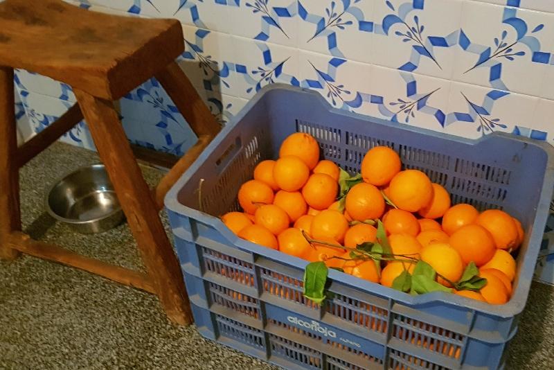 Te huur | Spaanse droomwoning voor avonturiers | Authentieke Catalaanse boerderij te huur