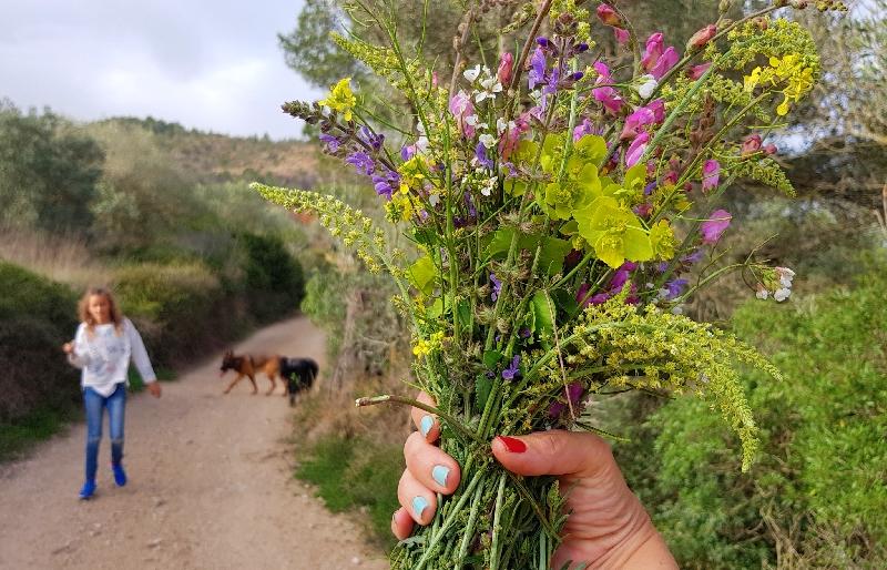 Te huur   Spaanse droomwoning voor avonturiers   Authentieke Catalaanse boerderij te huur