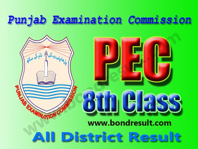Punjab Examination Commission PEC 8th Class Result 2016