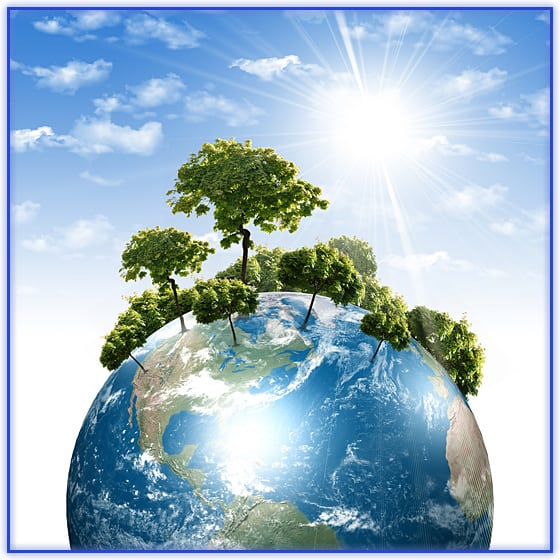 photo_environmental2 (1)