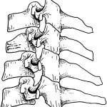 Cervical Spine Injury